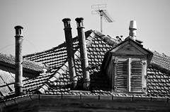(Jean-Luc Lopoldi) Tags: bw noiretblanc pyrnes toit chemines vieilleville pau mansarde dormer tuiles chienassis pench leaning