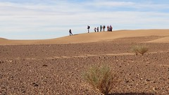 077-Maroc-S17-2014-VALRANDO (valrando) Tags: sud du maroc im sden von marokko massif saghro et dsert sahara erg sahel