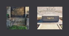 Two Graves of Theodor Herzl: left: Vienna (same graveyard where the graves of the Nazis Skorzeny, Maria Cebotari are - see previous upload) / right Israel Mount Herzl Zwei Gräber des תאודור הֶרְצֵל: links Familiengrab Wien / rechts Herzlberg Jerusalem (hedbavny) Tags: theodorherzl grab grave herzlberg mountherzl herzl mann male beard bart bearded bärtig תאודורהֶרְצֵל schrift writing letter gold schwarz black weis white green grün gelb yellow grau grey gray graustufen grauwert flower blume blossom blühen verblüht grabstein gravestone tomb tombstone graveyard cemetery friedhof israelitischeabteilung jüdischerfriedhof wien vienna austria österreich israel jerusalem hedbavny ingridhedbavny schriftsteller autor theater theatre stein stone bunt herbst autumn detail decay verfall