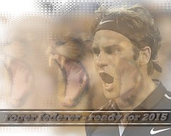 Collage... go Roger, ready for 2015. (Nicole Signer) Tags: schweiz switzerland perfect atp tennis roger rf federer rogerfederer no3 fedexpress