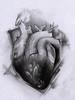 heart drawing (TH Tattoo - Salon tatuaje Bucuresti) Tags: tattoo tatuaje tatuaj salontatuaje