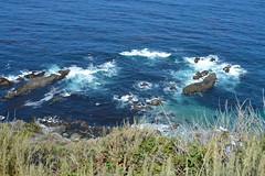 Pacific Ocean (Mattias Gardvik) Tags: ocean travel usa roadtrip highway1 resa californien madebyfloda