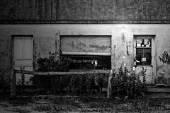Ramos generales 12 de Octubre (Todo lo que las hojas traen) Tags: blackandwhite abandoned blancoynegro argentina rural palenque abandonado ramosgenerales