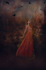 (angelaugustina) Tags: orange birds fairytale dark fineart longhair inspired fantasy blonde conceptual dreamer whimsical symbolism storytelling chained fineartphotography brookeshaden brookeshadeninspired