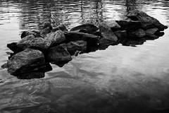 Devider (Korwisi) Tags: water canon river germany bavaria rocks riverside main sigma calm boulder rippled wrzburg 2015 70d