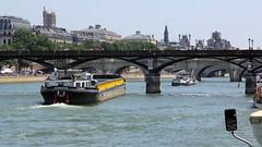 El Sena y sus puentes (ricardocarmonafdez) Tags: paris color rio canon river arquitectura ngc bridges puentes urbano sena estructuras 2013 60d ricardocarmonafdez