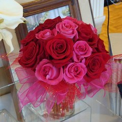 "#16V $120 for 18 Roses or $85 for 12 Roses • <a style=""font-size:0.8em;"" href=""http://www.flickr.com/photos/39372067@N08/16175913556/"" target=""_blank"">View on Flickr</a>"
