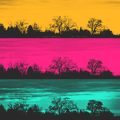 035 • 365 • IV (Randomographer) Tags: orange black tree silhouette collage photoshop landscape design three colorado colorful graphic bright cyan magenta layers 35 project365