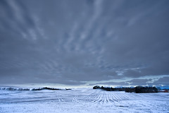 No. 0987 Frozen lines (H-L-Andersen) Tags: winter sky snow field farmhouse rural landscape denmark landscapes farm farming farmland crofts 1740mm 6d leadinglines contryside landoflight canoneos6d hlandersen