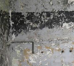die aufgegebenen Wände (Ellen Ribbe) Tags: wall decay wand grau ruine peelingpaint putz verfall bröckelnd