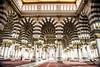 img_5844 (comsenol.com) Tags: makkah hira kabe medine mekke tawaf uhud tavaf mescidinebevi ravza nurdagi sevrdagi mescidikuba mescidikıbleteyn