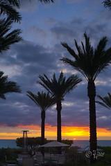 2015 Miami Bach sunrise (jeho75) Tags: morning usa beach silhouette sunrise landscape minolta miami sony 28mm landschaft sonnenaufgang morgen 6000 icle 128 rokkor