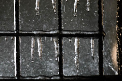 Ice storm melting.jpg (thekidfromcrumlin) Tags: weather melting va icestorm droplet splash reston