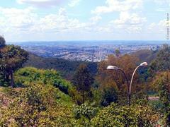 DSC00348 (Caique Cesar) Tags: new city cidade brazil nature beautiful brasil wonderful amazing cool nice fantastic sweet sony awesome sunny incredible floresta mata impressive horizonte impressionante belo incrivel