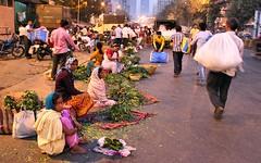 Dadar Flower Market / 1 (mariannaF) Tags: city travel flowers india flower asia market culture streetphotography documentary explore bombay mumbai flowermarket wholesale reportage dadar southasia travelphotography