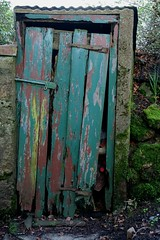 old green door (Christine Adey landscape & abstract artist.) Tags: door green character country cottage