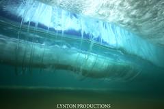 IMG_1567 copy (Aaron Lynton) Tags: vortex canon hawaii waves barrels barrel wave maui 7d spl turbine makena shorebreak lyntonproductions