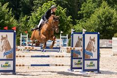 DSC07284_s (AndiP66) Tags: springen balsthal samstag saturday 3juli2016 3rdofjuly2016 2016 juli july pferd horse schweiz switzerland kantonsolothurn cantonofsolothurn oncours contest wettbewerb horsejumping springreiten pferdespringen equestrian sports pferdesport sport martinameyer grueb wolhusen luzern sony sonyalpha 77markii 77ii 77m2 a77ii alpha ilca77m2 slta77ii sony70400mm f456 sony70400mmf456gssmii sal70400g2 andreaspeters solothurn ch