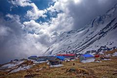 ASJ_ABC_2016011 (Joshi Anand) Tags: nepal camp india nature trek nikon base annapurna himalayas joshi anand 2016 giripremi anandjoshi