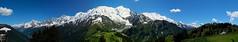Massif du Mont Blanc (tucker.ralph) Tags: trees sky snow mountains alps chamonix mont blanc