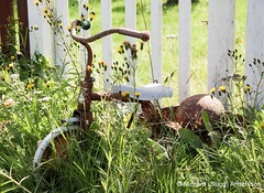 Trehjuling (mini_slugg) Tags: trehjuling tricycle sweden sverige toy eksj smland