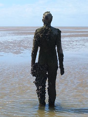 DSCF0677 (SierPinskiA) Tags: sea shells beach liverpool sand ironman pools barnacles ironwork mayday seashore merseyside anthonygormley irishsea 2016 anotherplace crosbybeach blundellsands fujixs1