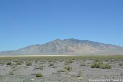 Nevada Mountains (Trucks, Buses, & Trains by granitefan713) Tags: nevada nv mountain mountainrange mountains scenic skyline desert nevadadesert
