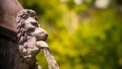 Fontaine,je ne boirai pas de ton eau  (Yasmine Hens) Tags: fontaine jardin citadelle eau water hensyasmine hens yasmine flickr namur belgium wallonie europa vert green nature
