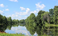 Trees reflecting in Chateauguay River (pegase1972) Tags: qc qubec quebec canada monteregie montrgie river rivire reflection tree arbre nature