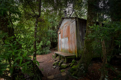 Echo Point Hut (robertdownie) Tags: trees forest path walk wood woods australia tramping moss hiking cabin trekking hut tasmania echo point cradle mountainlake st clair national park lake clare tasmanian parks wildlife service