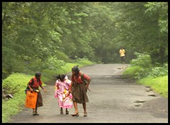 At SGNP (indianature13) Tags: sgnp sanjaygandhinationalpark forest jungle westernghats nature indianature monsoon mumbai india 2016 august borivili adivasi tribal adivasisinsgnp