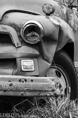 NT2.0385-MRNP150919_152882 (LDELD) Tags: kent washington unitedstates us chevrolet truck farm 6500 chevy pickup