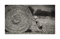 The big push (Chris Johnston Photography) Tags: yellow alex haybale summer fields kids fun pentax k1 pentaxk1 100mm pentaxart