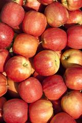_MG_8162-1 (palli.davide) Tags: salute mele mela rossa rosso frutta natura apple apples fruit fruits box cassetta cassa health