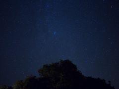 P8300408 (Adam Becvar) Tags: nightscape stars nightbeach beach night