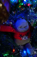 Monkey in a Christmas Tree (Kotatsu Neko 808) Tags: christmas toy monkey plymouth devon christmasdecorations cuddlytoy 2014 christmastreedecorations pgtipsmonkey sel35f18