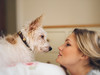 A Dog in the Rose Bed (christilou1) Tags: leica roses portrait dog colour girl jack bed russell jr m sonnar efex zm5015 vsco
