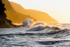 gold·en VII (IanLudwig) Tags: canon photography hawaii kauai hawaiian beaches tog togs niksoftware hawaiiphotos vsco cep4 canon5dmkiii hawaiianphotography 5dmkiii canon5dmarkiii ianludwig canon70200mmf28lisusmii lightroom5 canon2xtciii adobephotoshopcc