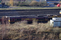 66013 - Toton - 13-12-14 (techno-phobe) Tags: shed dbs class66 ews toton 66013 dbschenker totontmd totondepot