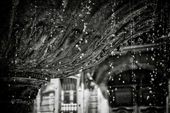 So many tears (steff808) Tags: blackandwhite bw france blancoynegro water fountain agua eau noiretblanc fuente aixenprovence fujifilm provence francia fontaine biancoenero placedalbertas fujinon1855 fujifilmxe2