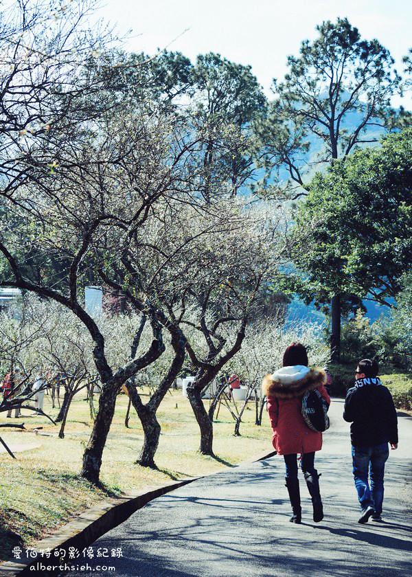 桃園復興.角板山公園