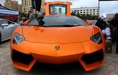 20150111_47 Lamborghini Supercar Week West Palm Beach Florida USA (Frabjous Daze) Tags: usa waterfront florida westpalmbeach palmbeach lamborghini musclecar sportscar flaglerstreet yhdysvallat urheiluauto flaglerpark muskeliauto supercarweek