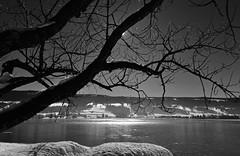 Lac de Joux (Diegojack) Tags: hiver lac neige paysages glace valledejoux
