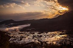 Yuanyang County  Duoyishu Terraced Field [Explored] () Tags: china sunrise yunnan       yuanyangcounty   duoyishuterracedfield