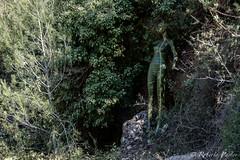 Arte escondido en Ruta Senderista de Carrícola (robertopastor) Tags: españa valencia es senderismo albaida carrícola robertopastor fujixt1
