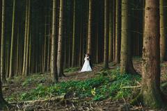 Teutoburger Wald (Yuliya Bahr) Tags: trees wedding green love nature forest germany dark deutschland groom bride hug couples together wald teutoburgerwald