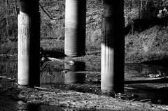 trio (fallsroad) Tags: bridge blackandwhite bw pillars polecatcreek nikond7000