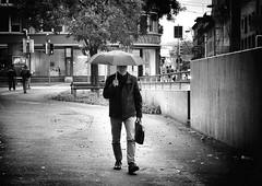 rain (Thomas8047) Tags: street city people urban blackandwhite bw streetart blancoynegro monochrome rain umbrella person photography schweiz switzerland nikon foto swiss zurich streetphotography streetscene zrich onthestreets zri langstrasse kreis5 streetphotographer strase schwarzundweiss 175528 streetpix d300s streetartstreetlife snapseed thomas8047