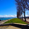 long green lawn perspective at McCovey Cove San Francisco (Fuzzy Traveler) Tags: sanfrancisco blue trees sky green water clouds lawn mccoveycove