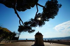 Nice - The beautiful side (Markus Barthel) Tags: nizza nice frankreich france alpha sigma uww